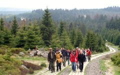 Wandern bei Bad Harzburg