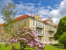 Klickbild für das Franzensbader Hotel Luisaa