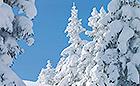 Winter in Mitteldeutschland