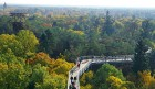 Luftbild Blick zum Baumkronenpfad bei Beelitz