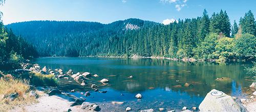Böhmerwald in Tschechien
