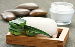 Wellness mit Aloe-Vera-Produkten