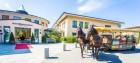 rheinsberg-seehotel-pferde